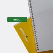 1RIGO_GIALLO_DETTAGLI_QSR1