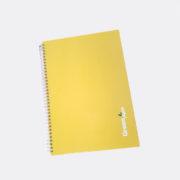 scheda prodotto_2_giallo